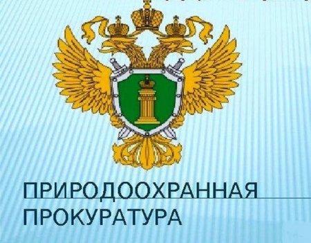 Природоохранной прокуратурой г. Санкт-Петербурга проведена проверка по факту уничтожения зеленых насаждений